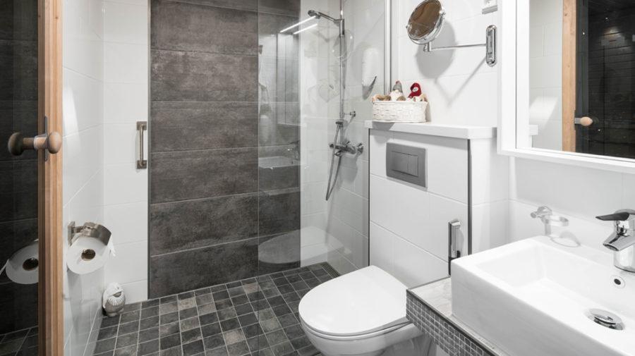 Santa's Igloos Arctic Circle, bathroom with the shower
